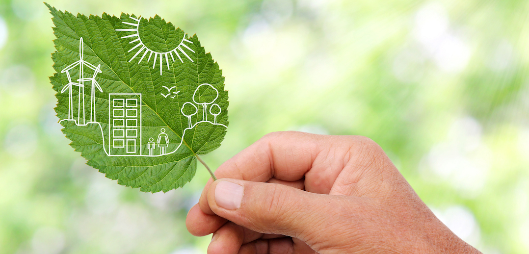 Duurzaamheid groen