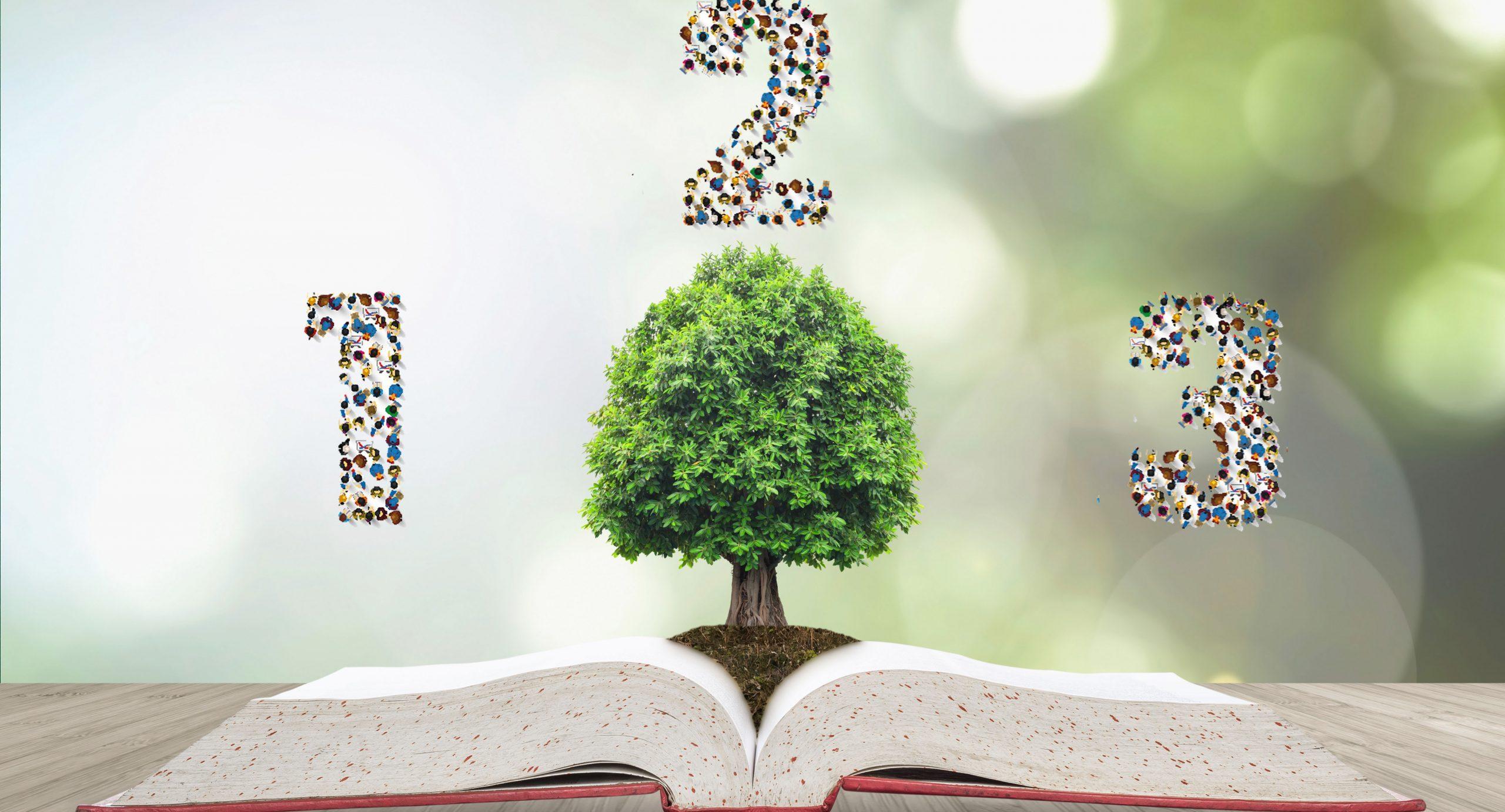 Artikel Drie aanbevelingen omgevinsplan