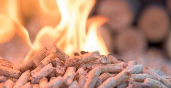Biomassa houtstook