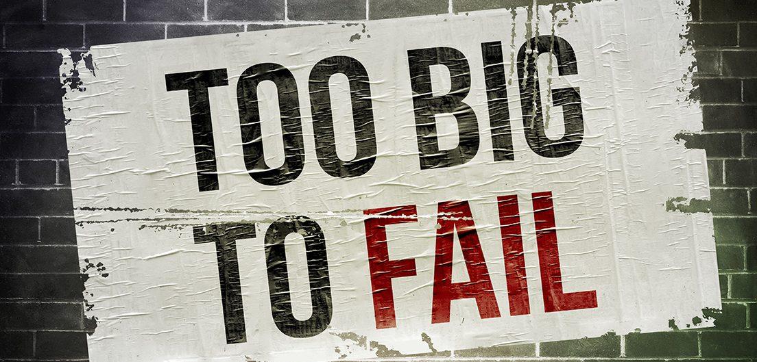 VIND Omgevingszaken Omgevingswet Too big to fail