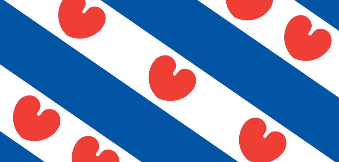 Friese voorlopers op weg naar Omgevingswet