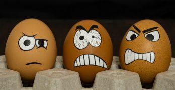Participatie woede en verdriet