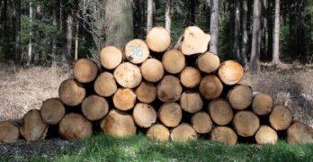 biomassa geen vergunning nodig